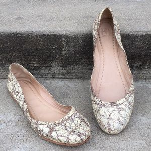 Frye Shoes - Frye Carson Ballet Flats Cracked Silver Multi 9M